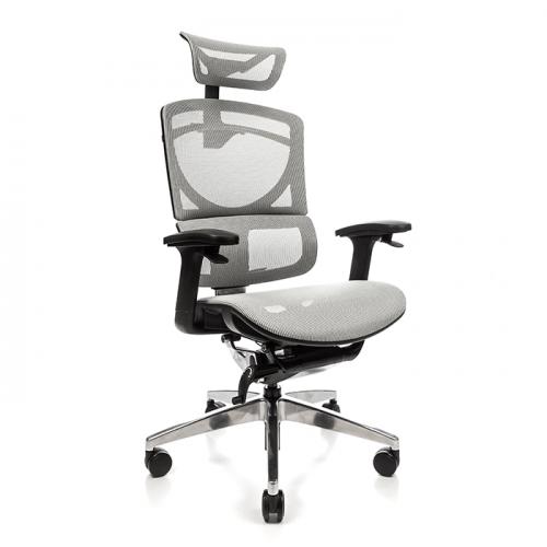 Ергономичен офис стол Ergo Pro SE, сив